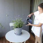 Crown Maids - Watering Plants
